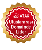 Atak Domain Hosting